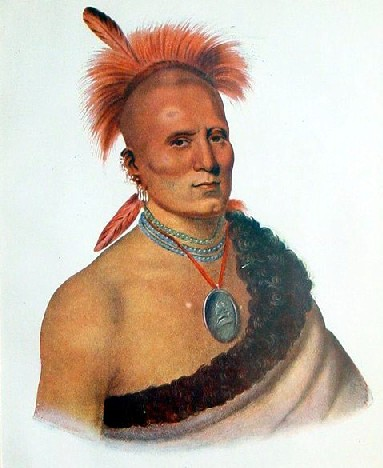"""cheif sharitarish of the great pawnees Read about red jacket, the last of the seneca tribe, sharitarish head man of the grand pawnees, neamathla of the seminole tribe, kaipolequa, chief of the saukie nation, tenskwautawaw and the prophet, shingabaa w'ossin, chief of the chippewa and many more """"great chiefs""""."""